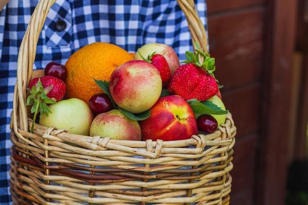 Die hände des mädchens halten nektarinen, orangen, erdbeeren, kirschen und minzblätter, die in einem weidenkorb liegen.