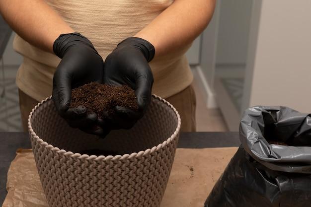 Die hände des menschen bewegen eine pflanze in einen neuen topf
