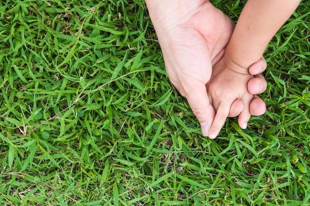 Die hände des vaters oder der mutter und des kleinkindes, die zusammen auf den rasenflächen halten