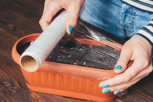 Die hände von frauen mit heller maniküre sind mit plastikwickelsamen und erde in einem topf für den anbau von pflanzen bedeckt