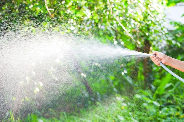 Die hand der frau hält den schlauch, um die bäume im garten mit wasser zu besprühen.