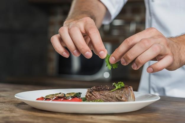 Die hand des chefmännchens, die den koriander auf vorbereitetem gebratenem rindfleisch garniert