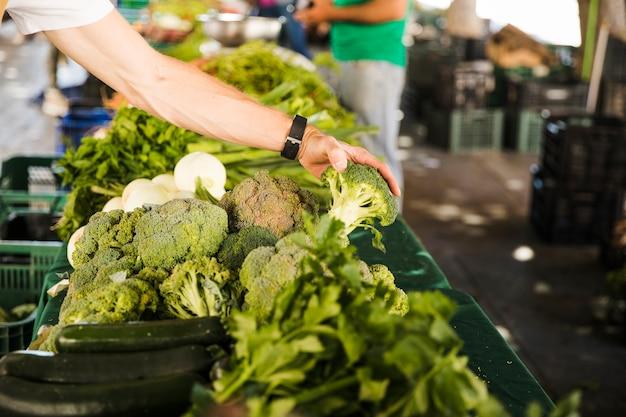 Die hand des mannes, die brokkoli beim wählen des gemüses vom markt hält