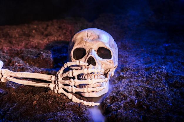 Die hand des skeletts, die den zahn des schädels auf dem boden schließt