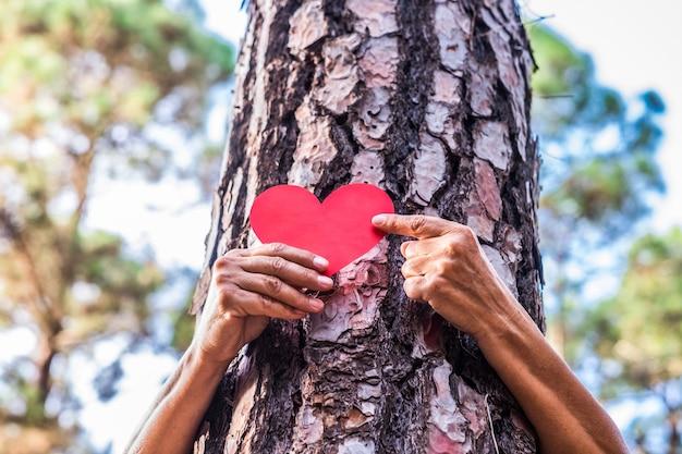 Die hand einer älteren frau im wald legt eine herzform auf den stamm, um uns zu sagen, dass jeder baum ein herz hat. tag der erde konzept. gemeinsam den planeten vor der abholzung retten