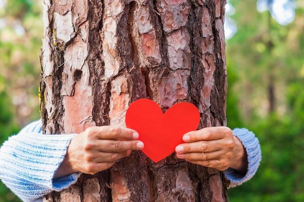 Die hand einer erwachsenen frau im wald legt eine herzform auf den stamm, um uns zu sagen, dass jeder baum ein herz hat. tag der erde konzept. gemeinsam den planeten vor der abholzung retten