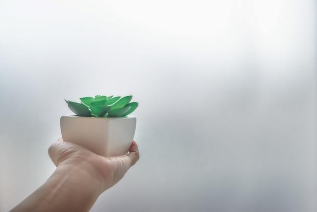 Die hand eines kaktusmannes in einem topf des weißen quadrats