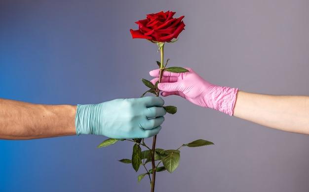 Die hand eines mannes in einem blauen handschuh gibt der hand einer frau in einem rosa handschuh eine rote rose