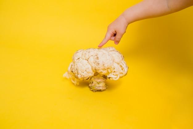 Die hand zeigt auf faulen blumenkohl auf einem gelben isolierten hintergrund mit platz für text