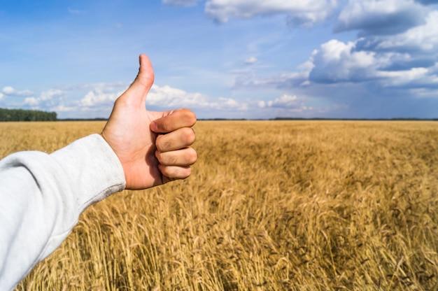 Die hand zeigt das zeichen wie wegen einer guten ernte