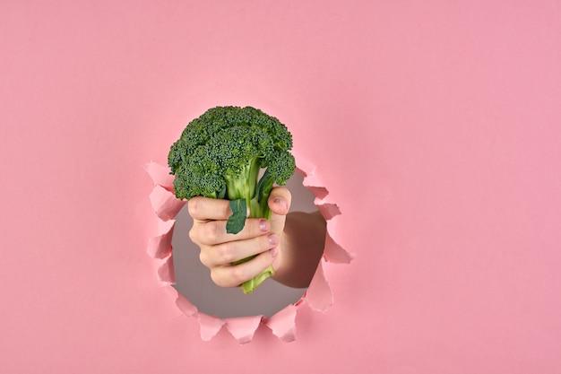 Die idee, entscheidung für gesunden lebensstil, brokkoli als zeichen des wellness auf rosa hintergrund mit einem zerrissenen loch, nahaufnahme zu treffen