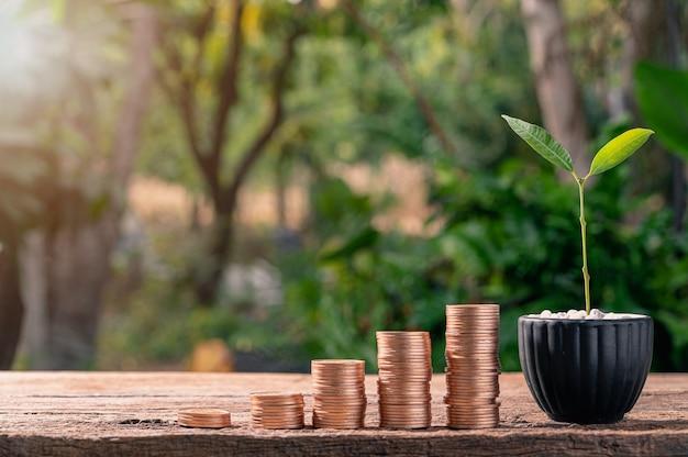 Die idee funktioniert, geld gestapelte münzen zu verdienen, anstatt an bäumen zu wachsen.