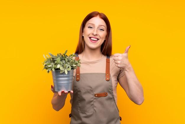 Die junge rothaarigegärtnerfrau, die eine anlage über dem lokalisierten gelben geben daumen hält, up geste