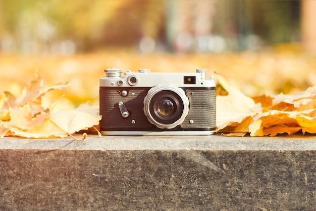Die kamera liegt am straßenrand in einem herbstpark mit gelben blättern