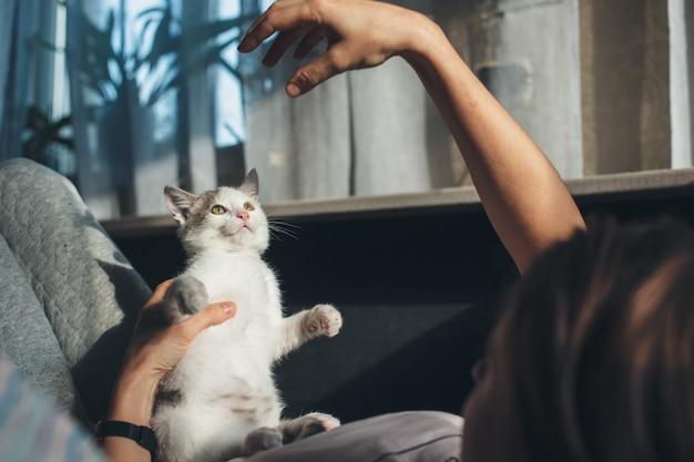 Die kaukasische frau und ihre katze spielen auf der couch und deuten mit der hand auf das tier