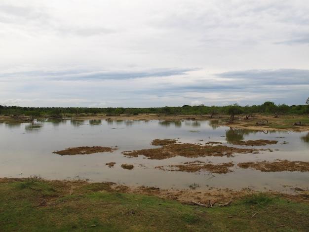 Die landschaft im yala-nationalpark, sri lanka