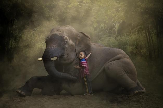 Die liebe von kindern und thailändischen elefanten