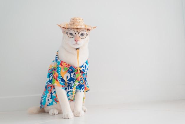 Die lustige katze, die im urlaub geht, tragen strandhemd und hut im sommerkonzept