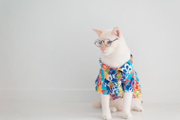 Die lustige katze, die im urlaub geht, tragen strandhemd und hut im sommerkonzept.