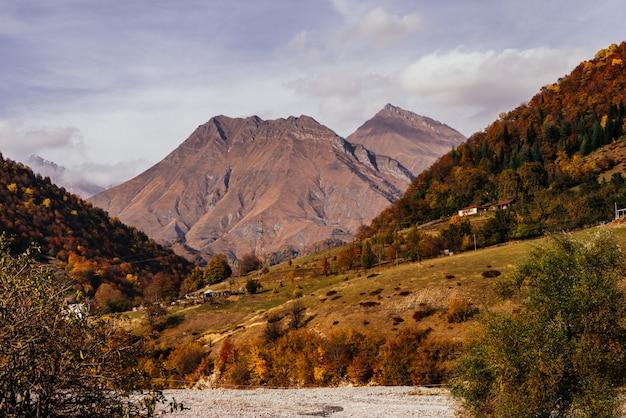 Die magische natur, berghänge sind mit pflanzen und bäumen bedeckt, landschaft