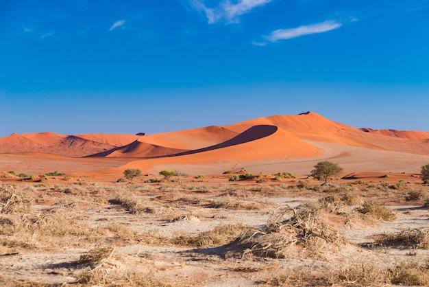 Die malerische sossusvlei und deadvlei, ton- und salzpfanne mit geflochtenen akazienbäumen, umgeben von majestätischen sanddünen.