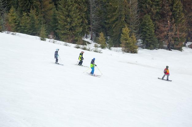 Die menschen sind darauf trainiert, auf der piste in der nähe des waldes ski zu fahren.