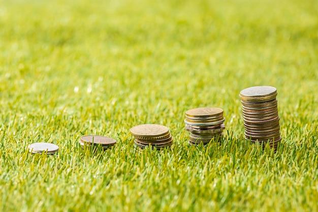 Die münzsäulen auf gras