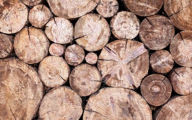 Die natürliche kulisse der rundsäge geschnittene bäume im gesamten rahmen.