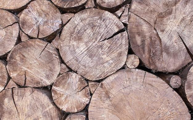 Die natürliche kulisse der rundsäge geschnittene bäume im gesamten rahmen