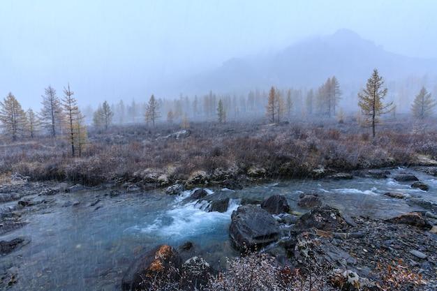 Die natur des altai-gebirges russland