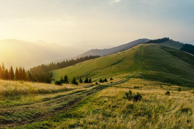 Die neblige bergstraße geht auf die hügel der sonnenuntergangslandschaft. sonnenstrahlen durch die bäume.