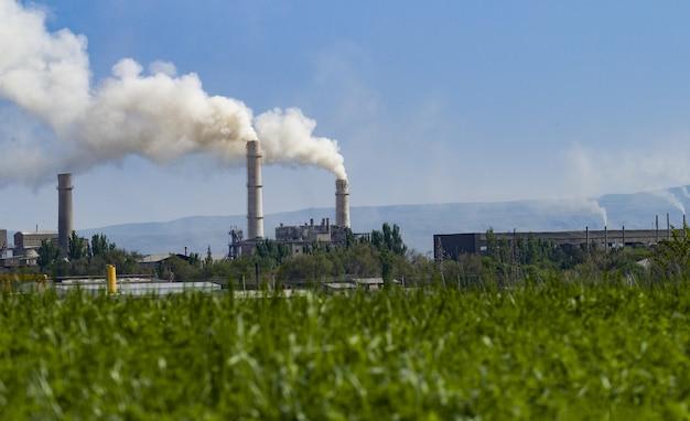 Die pflanze verschmutzt die umwelt. umweltverschmutzung der naturpflanze