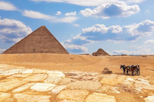 Die pyramide von menkaure-komplex und pferde in der nähe, gizeh, ägypten.