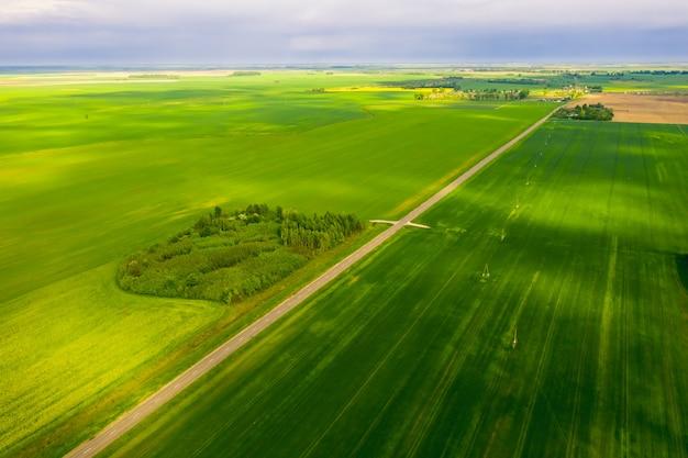 Die route verläuft zwischen den grünen wiesen von belarus. ansicht von oben