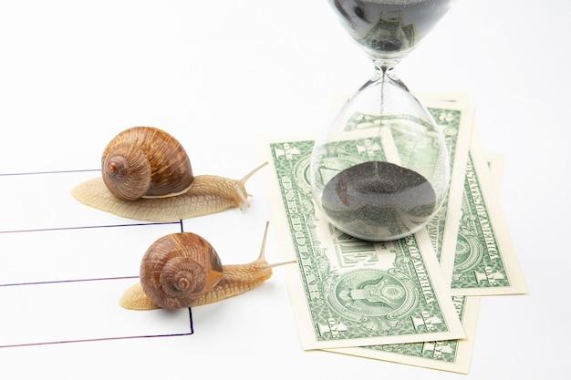 Die schnecke hat es eilig, schnell zu gewinnen, um geld zu erhalten. wettbewerb um die chance, der erste im geschäft zu sein. zeit für den erfolg von finanztransaktionen.
