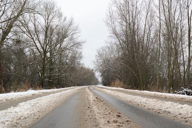 Die schneebedeckte autobahnstraße, die durch den wald und die bäume führt, wintersaison