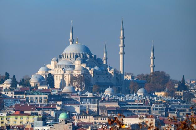 Die schöne aussicht auf suleymaniye mosquei istanbul truthahn