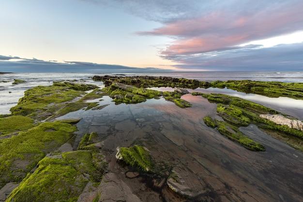Die schönheit der strände nordspaniens mit dem moos auf den felsen