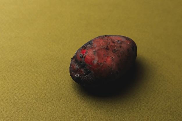 Die seltsame organische, hässliche, mutierte rote kartoffel, gezackt mit insektenstichen, sauer und schwarz geworden