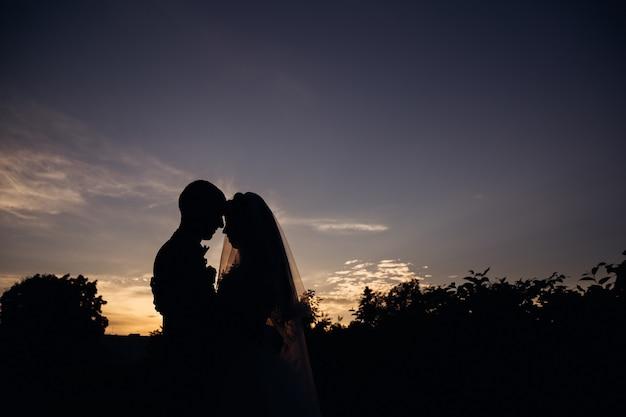 Die silhouetten der jungvermählten lehnen sich über den abendhimmel aneinander.