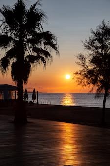 Die sonne geht über dem meer auf. blick von der promenade mit palmen.