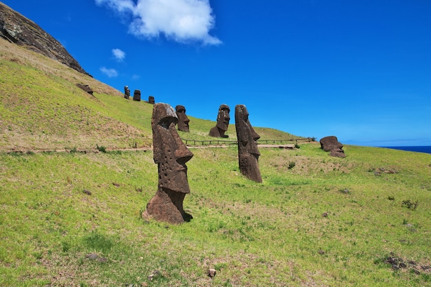 Die statue moai in rano raraku auf der osterinsel rapa nui in chile