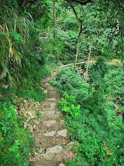 Die straße auf bergen in banaue auf den philippinen