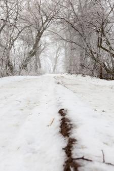 Die straße ist in der wintersaison mit schnee bedeckt
