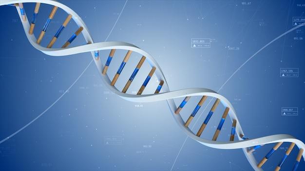 Die struktur der menschlichen dna dreht sich vor dem hintergrund von verbindungen und zahlen. 3d-illustration der konzeptuellen wissenschaftstechnologie