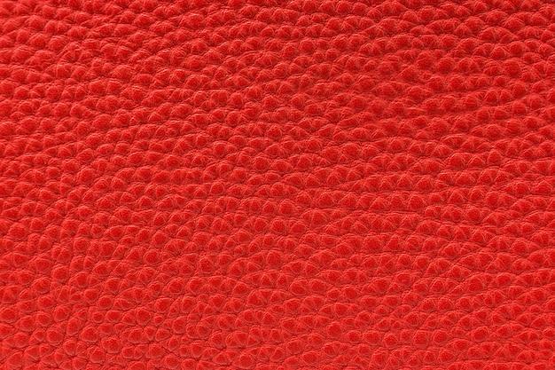 Die textur der haut ist rot