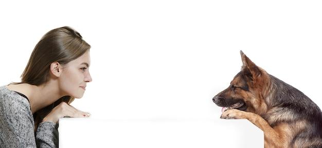 Die traurige ernste frau und ihr hund auf weißem hintergrund. shetland sheepdog sitzt vor einem weißen studiohintergrund. das konzept von menschen und tieren gleichen emotionen