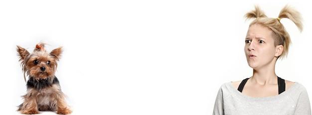 Die überraschte und erschrockene frau und ihr hund auf weißem hintergrund. yorkshire-terrier im studio gegen ein weiß. das konzept von menschen und tieren gleichen emotionen