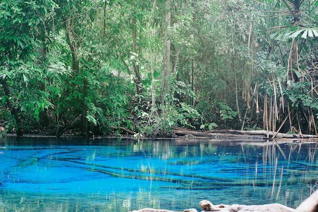 Die wälder und lagunen sind strahlend blaues wasser von thailand.