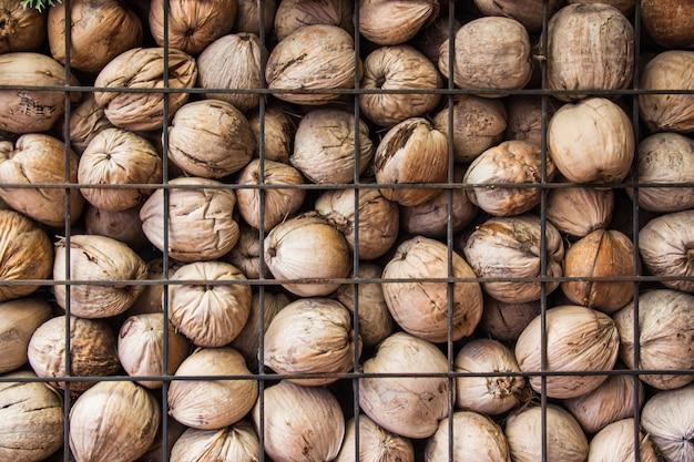 Die wände sind stapel von getrockneten braunen kokosnussstapeln mit trennwandstahlgitter.